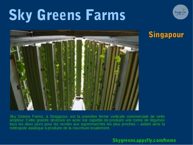 Sky Greens Farms Sky Greens Farms, à Singapour, est la première ferme verticale commerciale de cette ampleur. Cette grande...