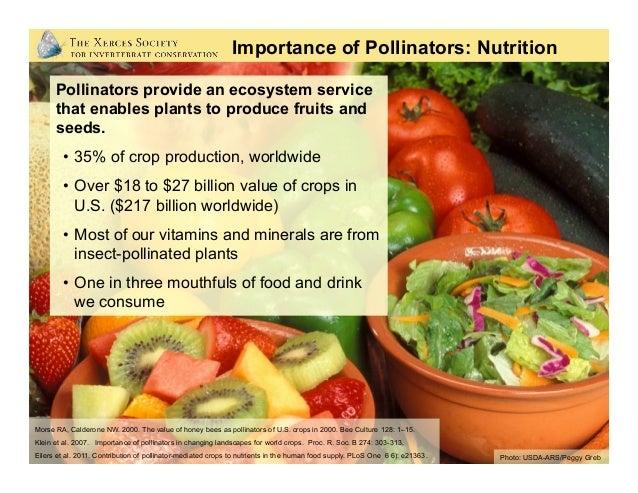 Photo: USDA-ARS/Peggy Greb Importance of Pollinators: Nutrition