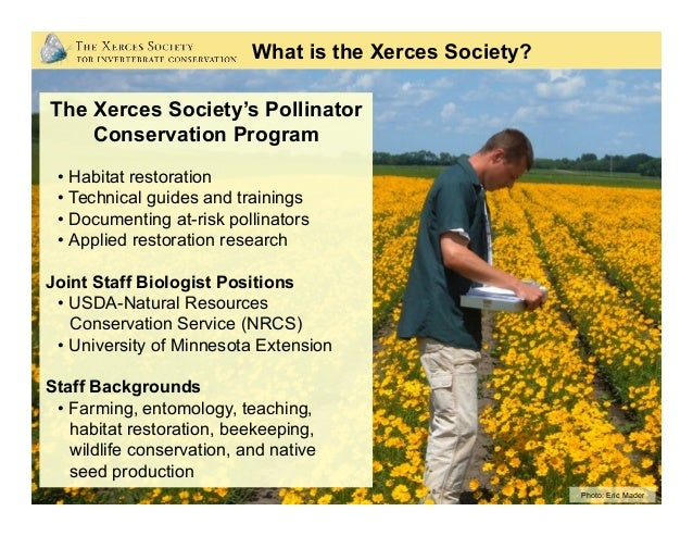 Photo: Eric Mader What is the Xerces Society? The Xerces Society's Pollinator Conservation Program • Habitat restoration ...
