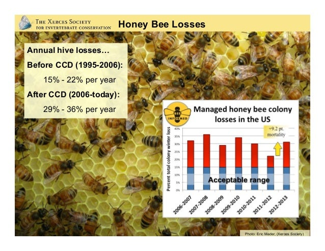 Rusty-patched bumble bee 87% Range Loss Yellow-banded bumble bee 31% Range Loss Western bumble bee 28% Range Loss Franklin...