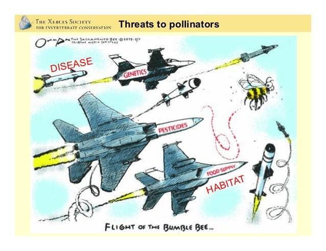 DISEASE HABITAT Threats to pollinators