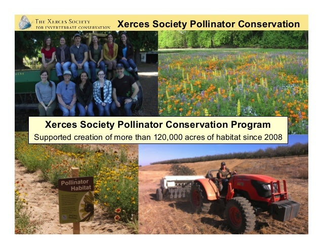 Xerces Society Pollinator Conservation Xerces Society Pollinator Conservation Program Supported creation of more than 120,...