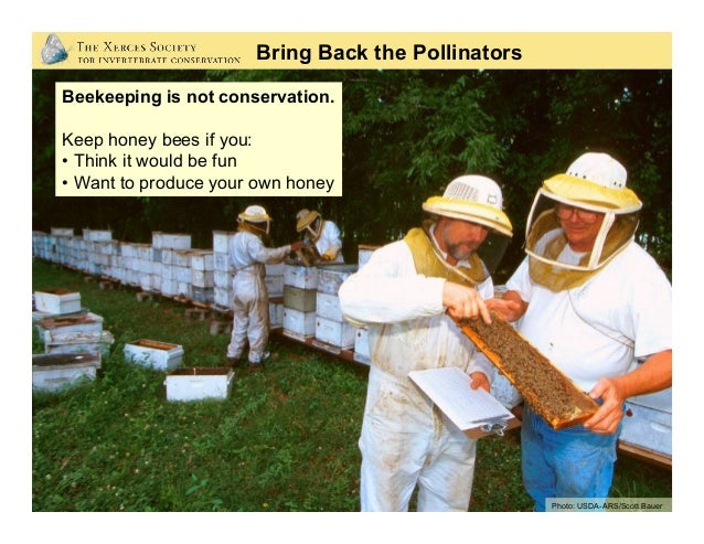 Beekeeping is not conservation. Keep honey bees if you: • Think it would be fun • Want to produce your own honey Photo: ...
