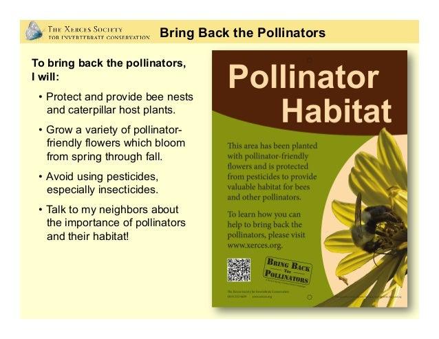 Why Care About Pollinators? Photo: Matthew Shepherd