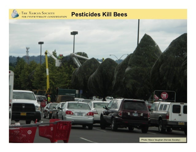 Avoid using pesticides If you must use pesticides: •Minimize their use •Read guidance carefully But be warned: even when...
