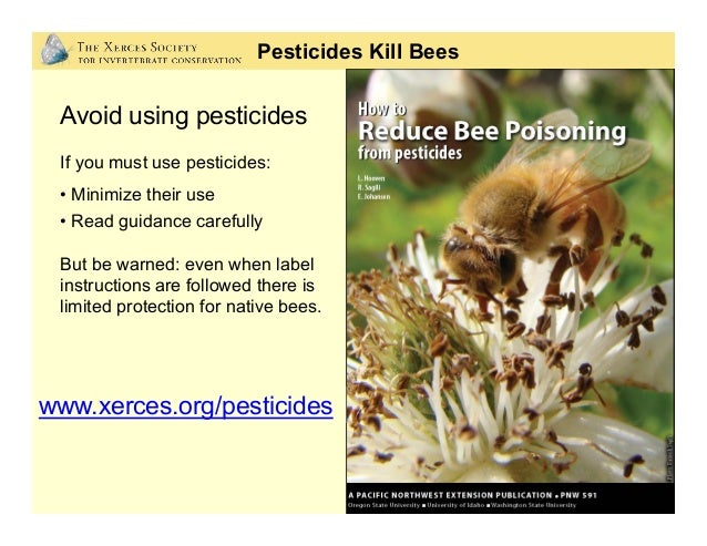 Neonicotinoid Insecticides Photo: Regina Hirsch Neonicotinoid Systemic Insecticides: • Increasingly used on crops • Appl...