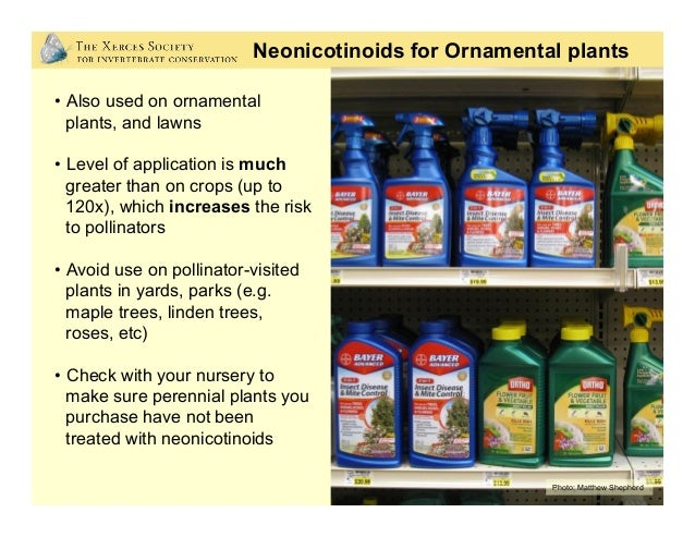 Organic-Approved Pesticides? • Pyrethrins = Dangerous for Bees! • Spinosad = Dangerous for Bees! • Beauveria bassiana =...