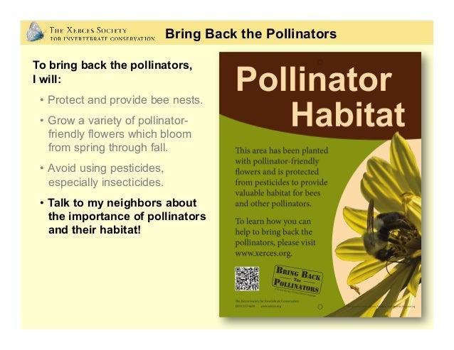 Get involved! www.bringbackthepollinators.org Bring Back the Pollinators