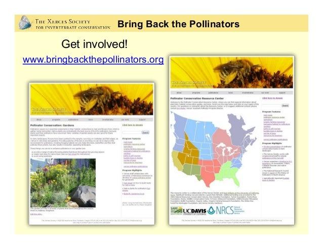 •Xerces Society publications Bring Back the Pollinators