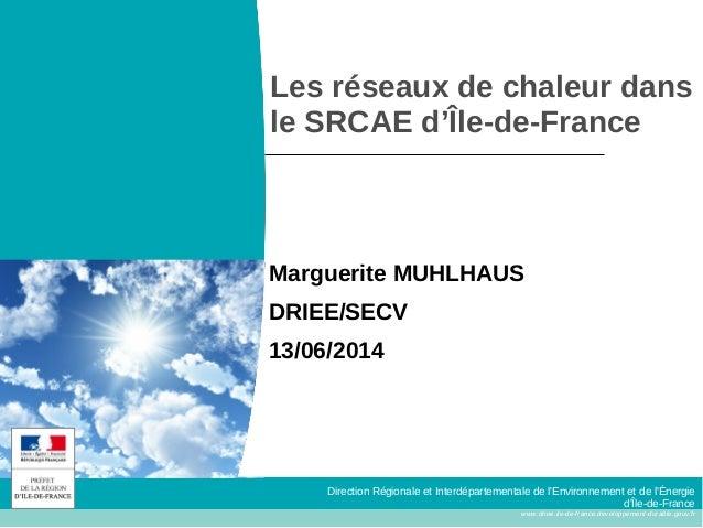 Direction Régionale et Interdépartementale de l'Environnement et de l'Énergie d'Île-de-France www.driee.ile-de-france.deve...