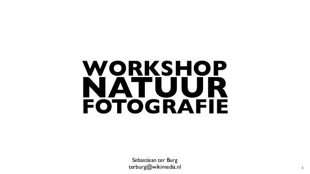 WORKSHOP NATUUR FOTOGRAFIE Sebastiaan ter Burg  terburg@wikimedia.nl 1