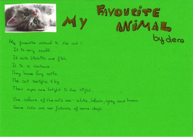 my favourite animal cat essay Describe your pet or your favourite animal posted on 20 november 2011 by sergi lópez olmedo my pet is a cat is small and has 4 legs are gray with black.