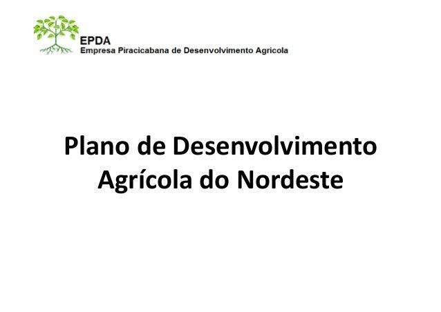 Plano de Desenvolvimento Agrícola do Nordeste