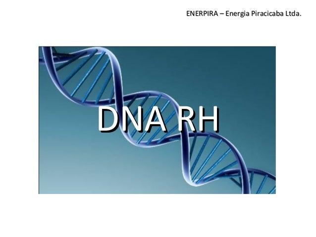 DNA RHDNA RH ENERPIRA – Energia Piracicaba Ltda.ENERPIRA – Energia Piracicaba Ltda.