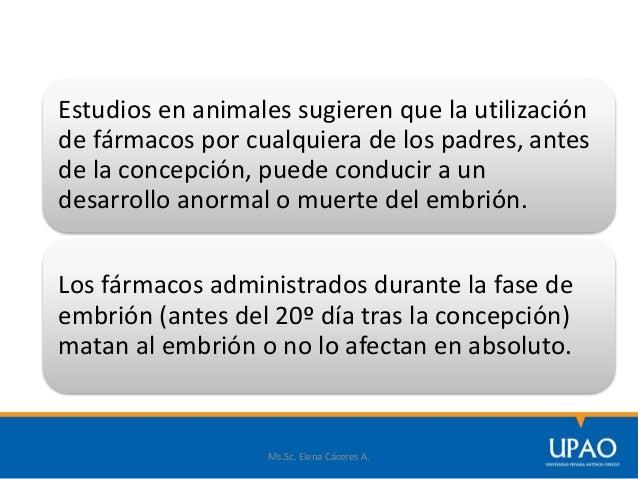 Ms.Sc. Elena Cáceres A. Estudios en animales sugieren que la utilización de fármacos por cualquiera de los padres, antes d...