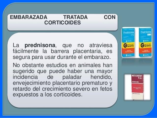 HORMONAS SEXUALES Los andrógenos y los progestágenos sintéticos administrados durante las 12 primeras semanas del embarazo...