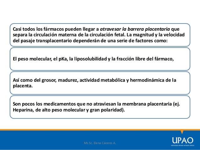 Ms.Sc. Elena Cáceres A. EFECTOS FARMACOLÓGICOS ADVERSOS SOBRE EL FETO Y EL RECIÉN NACIDO Los tejidos en desarrollo son más...