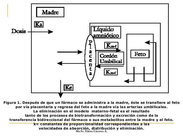 5) Estereoespecificidad: Las formas naturales de los estereoisómeros se transfieren con más facilidad que el resto. 6) Des...