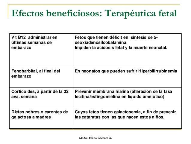 Ms.Sc. Elena Cáceres A.  Se deberá tener en cuenta que el recién nacido, especialmente el prematuro, cuenta con mecanismo...