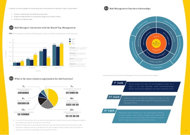 Risk management summary report