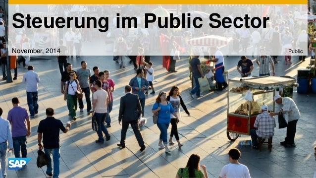 Steuerung im Public Sector  November, 2014  Public