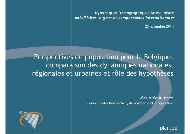 Dynamiques Démographiques bruxelloises:  spécificités, enjeux et comparaisons internationales  28 novembre 2014  Perspecti...