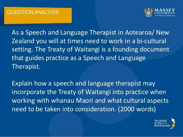 The treaty of waitangi essay definition