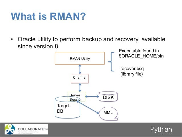What do you need to backup? • Critical – Data files – Control files – Archived Redo logs (If Inconsistent Backup taken...