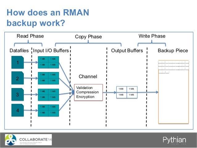 Benefits of the RMAN Catalog RMAN Target DB Target DB Target DB Catalog DB Repository for multiple incarnations of a singl...