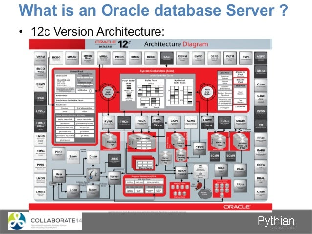 What is an Oracle database Server ? • 12c Version Architecture: