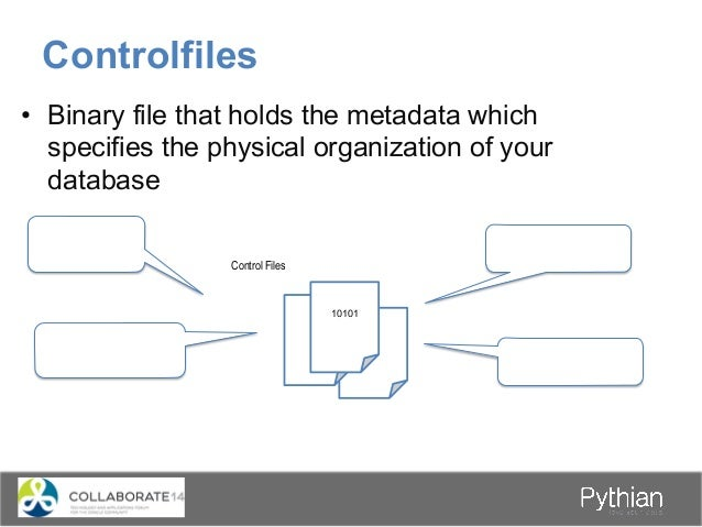 • Binary file that holds the metadata which specifies the physical organization of your database Controlfiles 10101 Contr...