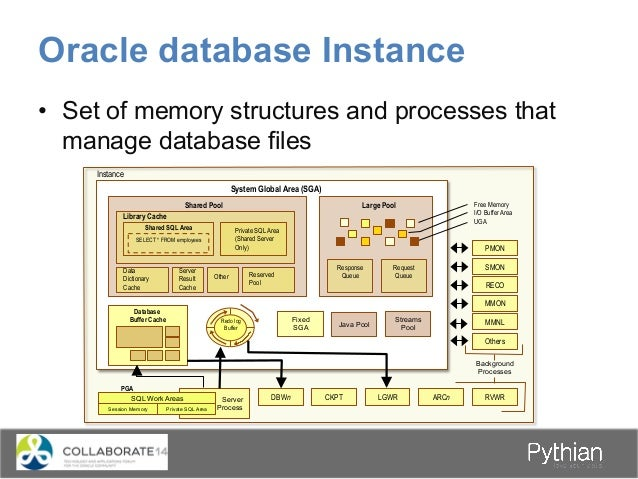 Oracle database Instance • Set of memory structures and processes that manage database files System Global Area (SGA) Sha...