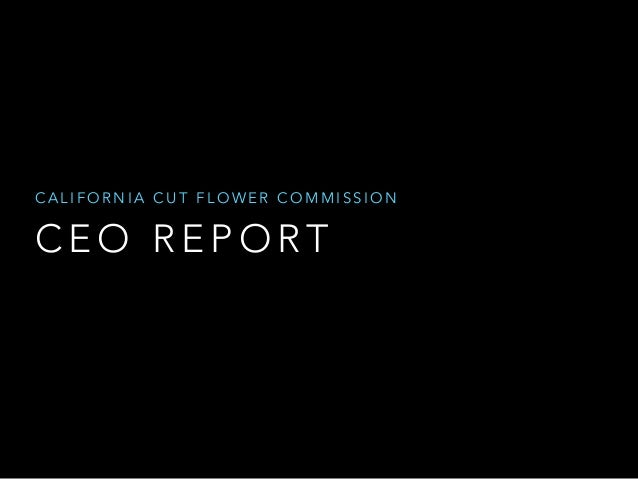 CALIFORNIA CUT FLOWER COMMISSION  CEO REPORT