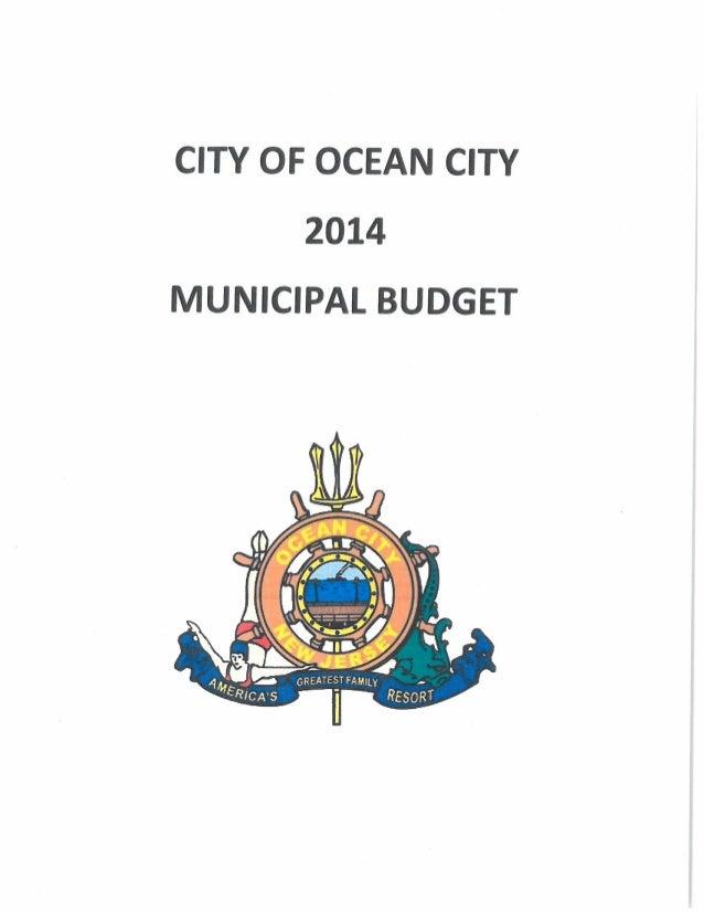 2014 Local Municipal Budget p g