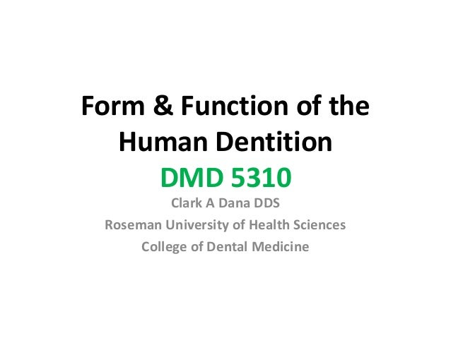 Form and Function Course Introduction