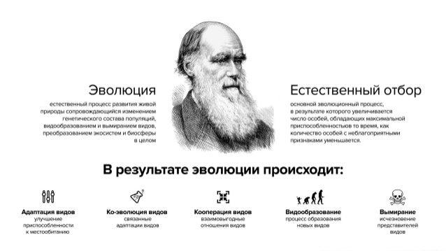 Тренды рынка интернет-рекламы в России, 2012-2014 - презентация для конференции Измени Сознание 2014 Slide 2