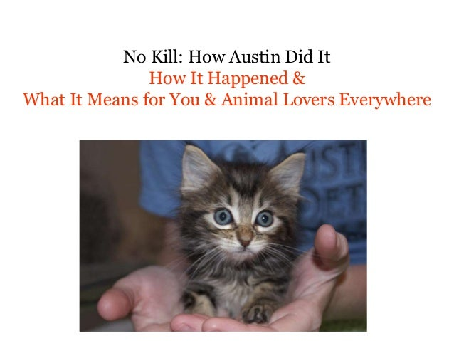 No Kill: How Austin Did It How It Happened & What It Means for You & Animal Lovers Everywhere