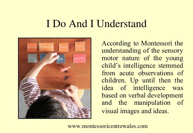 observations of dr montessori From the observations that dr montessori made of these heightened phases of interest sprang a methodology of education which centers on preparing.
