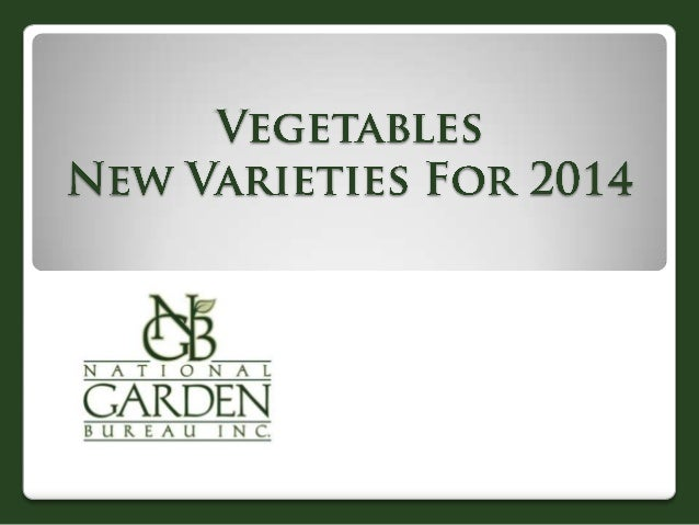 """•Burpee Exclusive •Flowerless plants never bolt  •Deliriously fragrant & flavorful •Produces all season - just won""""t quit ..."""