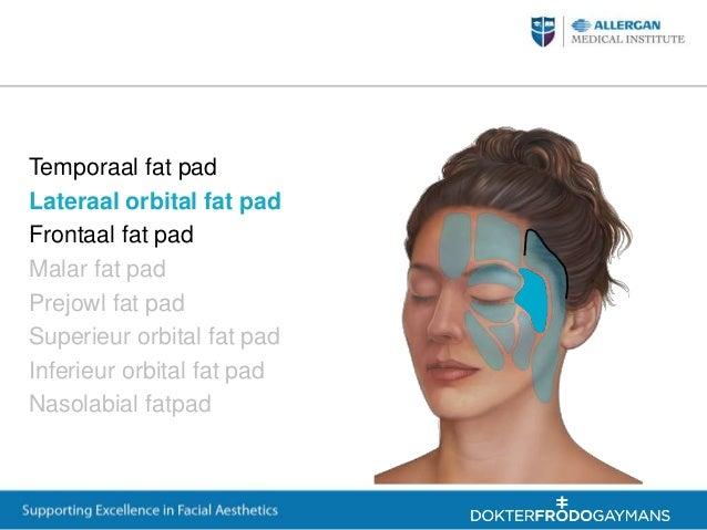 Facial anatomy allergaqn