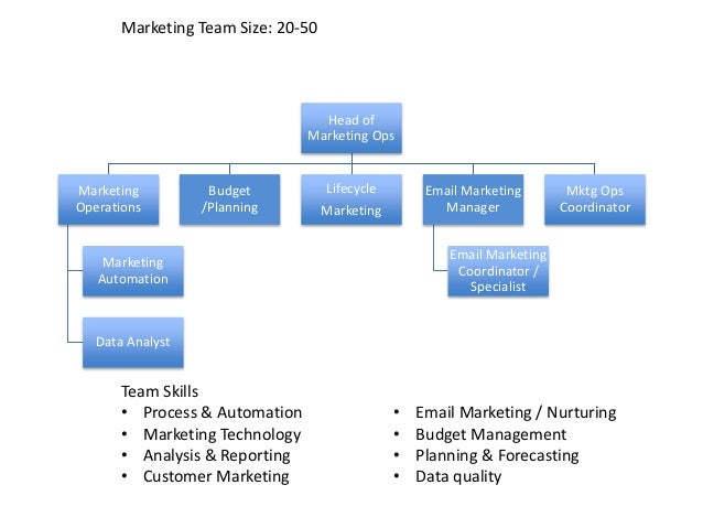 The Anatomy Of A Highimpact Marketing Operations Team. Action Verb For Resume. List Skills On Resume. Creative Resume. Information Systems Resume. Entry Level Resume Template. Portfolio Resume. Resume Builder App. 1 Page Resume