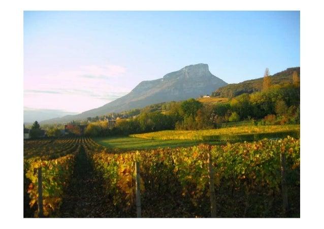 Panorama des fili res agricoles en pays de savoie par florent michez - Chambre d agriculture 31 ...
