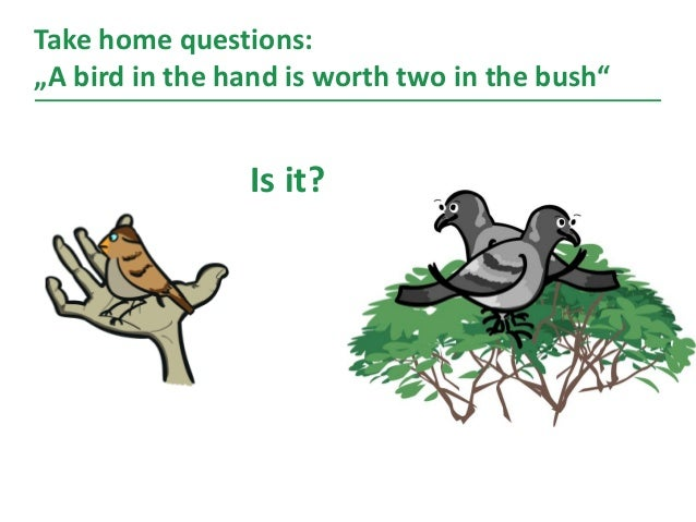 """Take home questions: """"A bird in the hand is worth two in the bush"""" 24 h Is it?"""