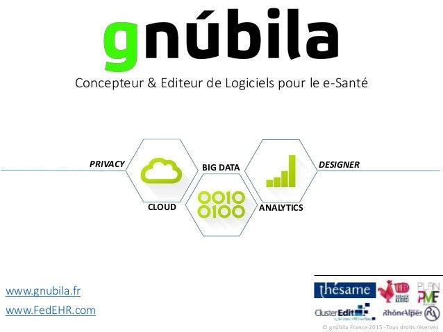 © gnúbila France 2015 -Tous droits réservés CLOUD BIG DATA ANALYTICS Concepteur & Editeur de Logiciels pour le e-Santé www...