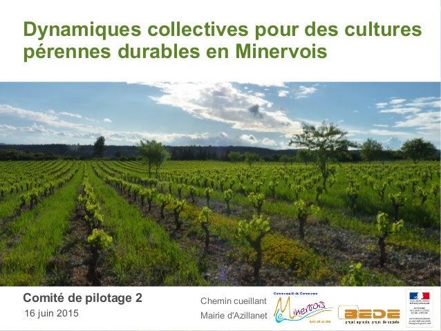 Dynamiques collectives pour des cultures pérennes durables en Minervois Comité de pilotage 2 16 juin 2015 Chemin cueillant...