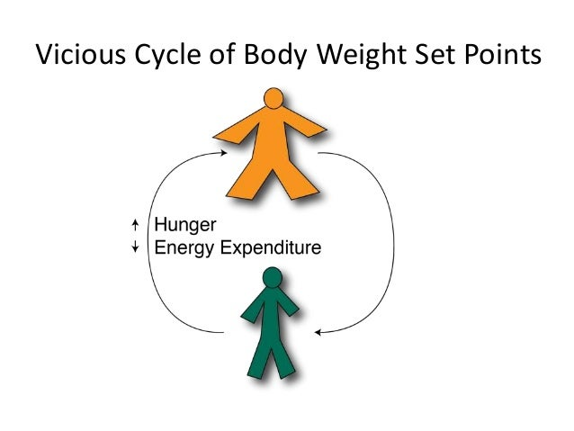 Role of energy in the body