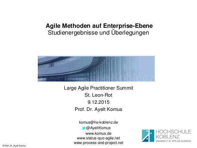 © Prof. Dr. Ayelt Komus Agile Methoden auf Enterprise-Ebene Studienergebnisse und Überlegungen Large Agile Practitioner Su...