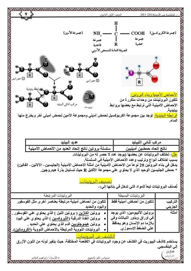4102 الصف الأول الثانوي 9 / الخلاصة في الأحياء 4102   الأحماض الأمينية وبناء البروتين:  تتكون البروتينات من وحدات متكررة ...