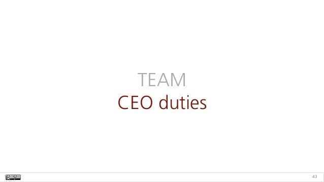 TEAM CEO duties 43