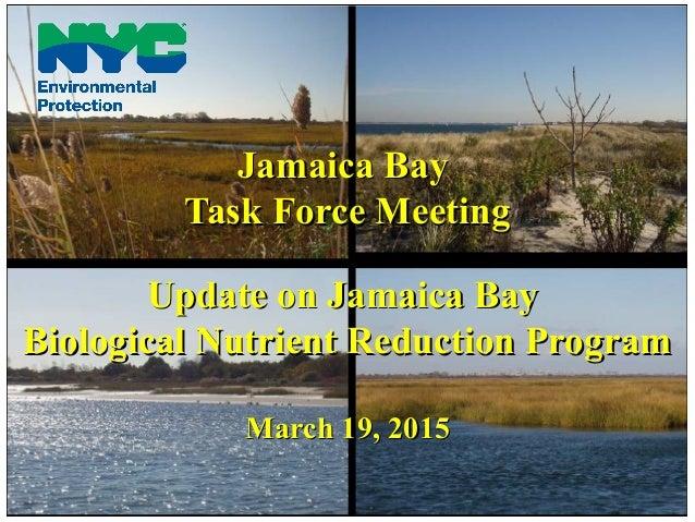 Jamaica BayJamaica Bay Task Force MeetingTask Force Meeting Update on Jamaica BayUpdate on Jamaica Bay Biological Nutrient...